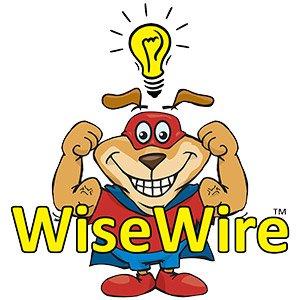 PetSafe YardMax Fence System w/ 14g WiseWire® PIG00.