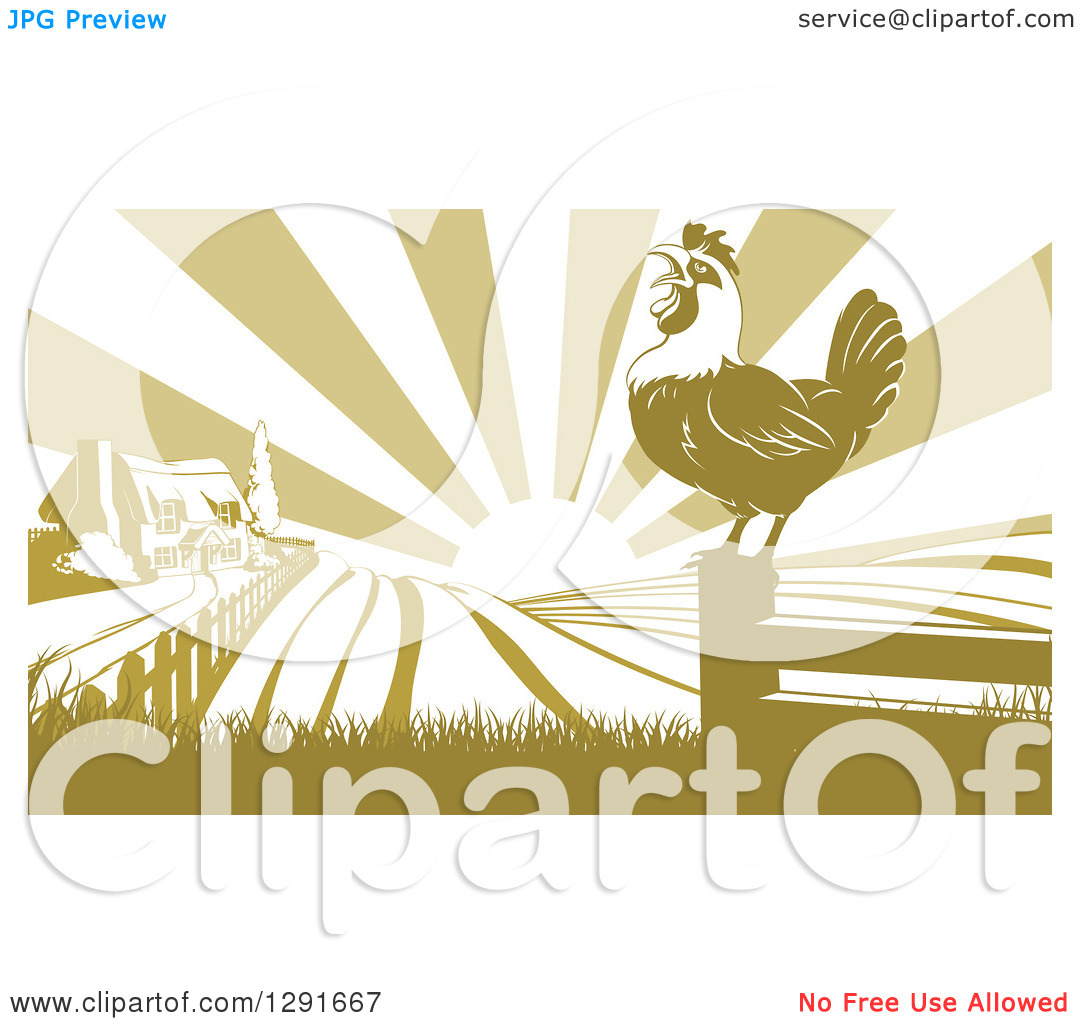 Clipart of a Crowing Rooster on a Fence Post Against a Sunrise.