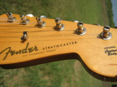 Different colored Fender Logo.