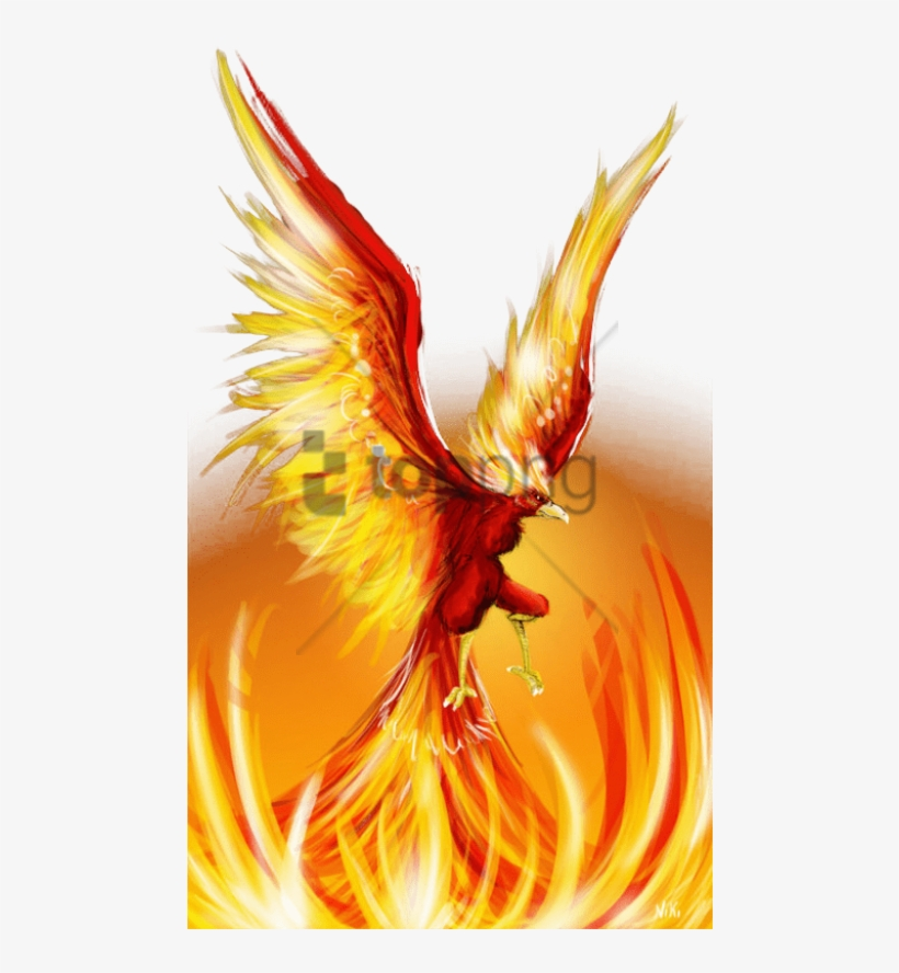 Free Png Fire Phoenix Png Image With Transparent Background.
