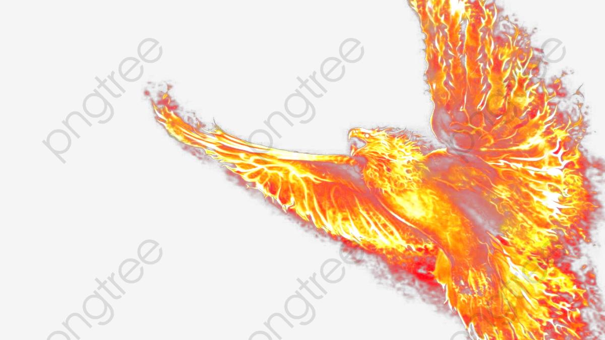 Phoenix Wallpaper, Fire, Fantasy, At Last PNG Transparent Clipart.