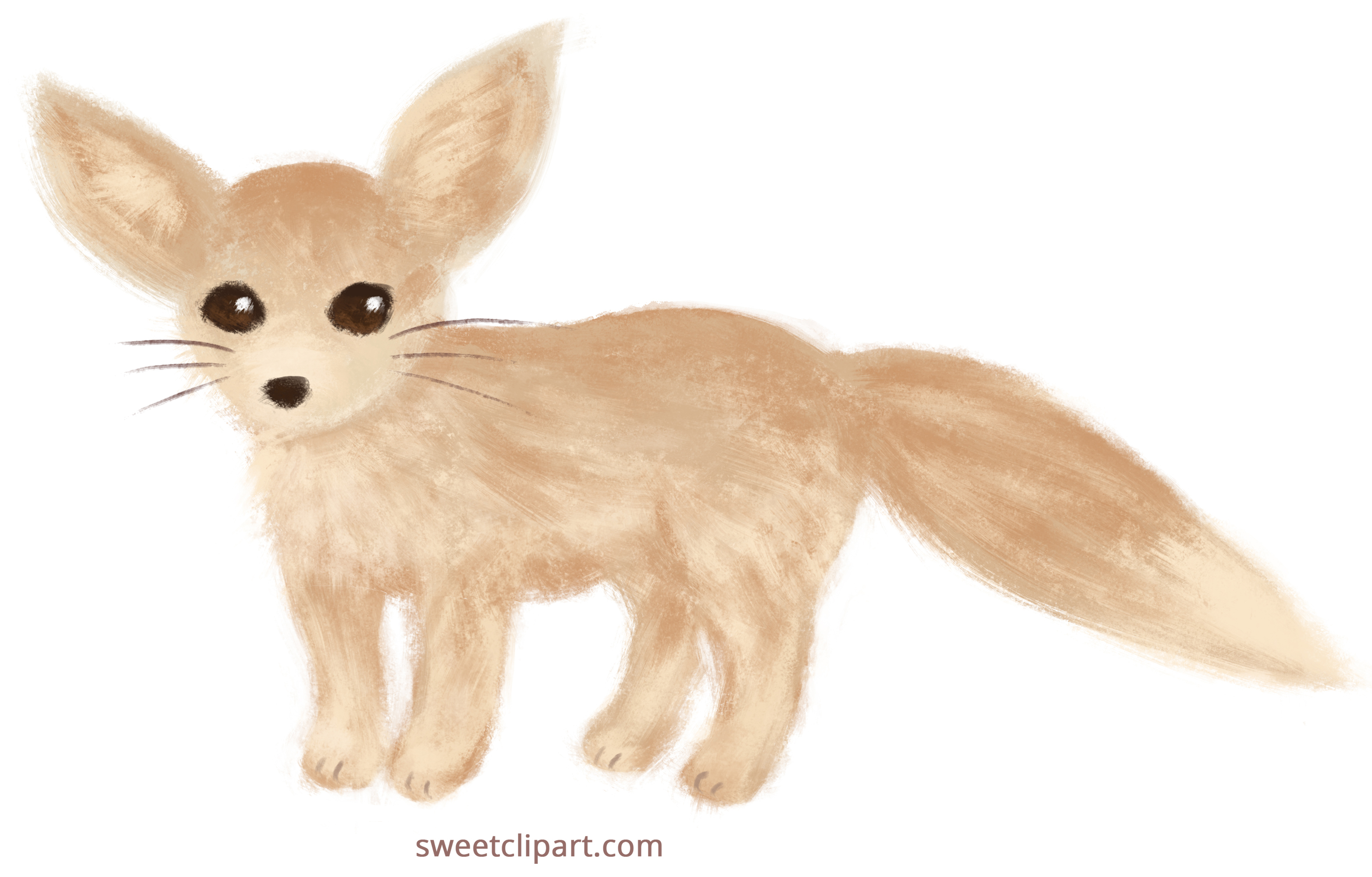 Fennec Fox Painted Clip Art.
