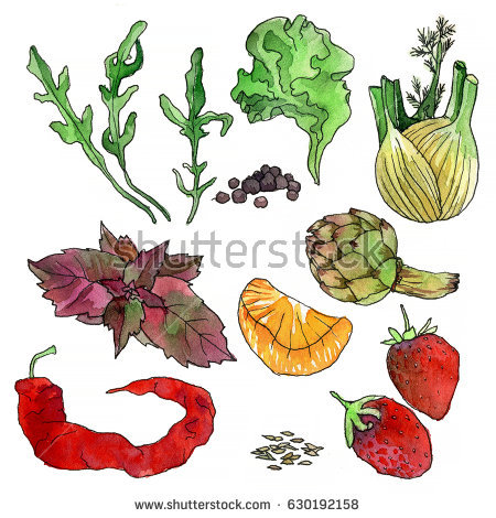Fennel Stock Images, Royalty.