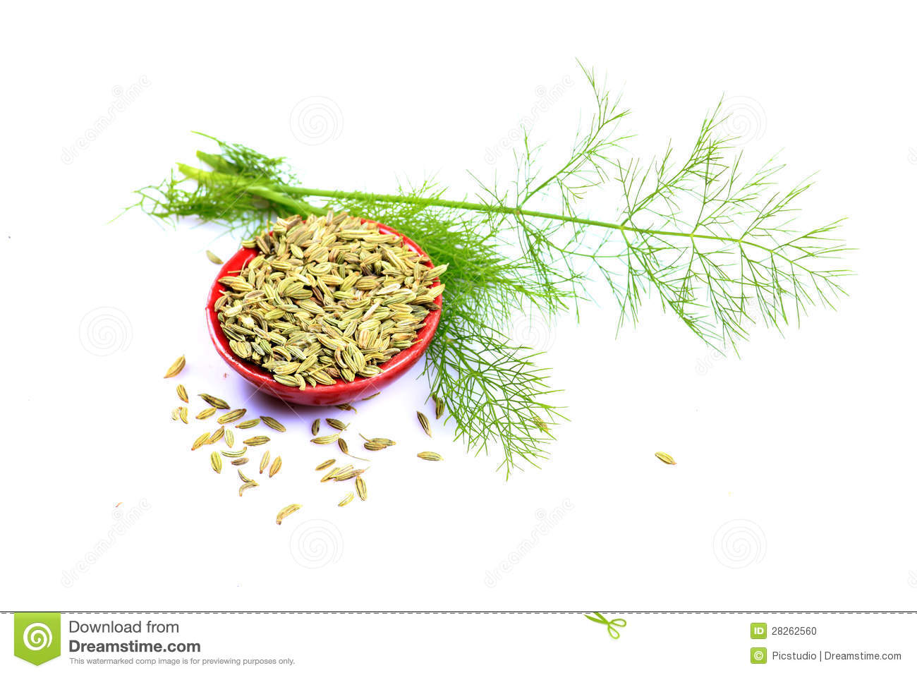 Fennel Seeds Royalty Free Stock Photos.