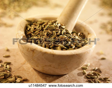 Picture of Fennel Seeds In Pestle And Mortar u11484547.