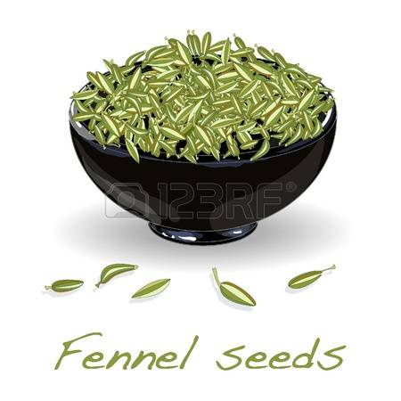 269 Fennel Seeds Cliparts, Stock Vector And Royalty Free Fennel.