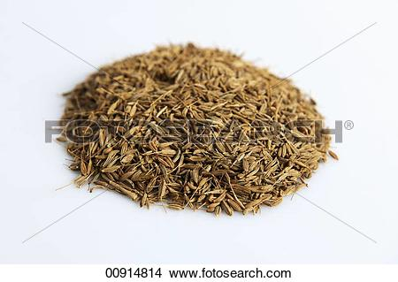 Stock Photo of A pile of fennel seeds 00914814.