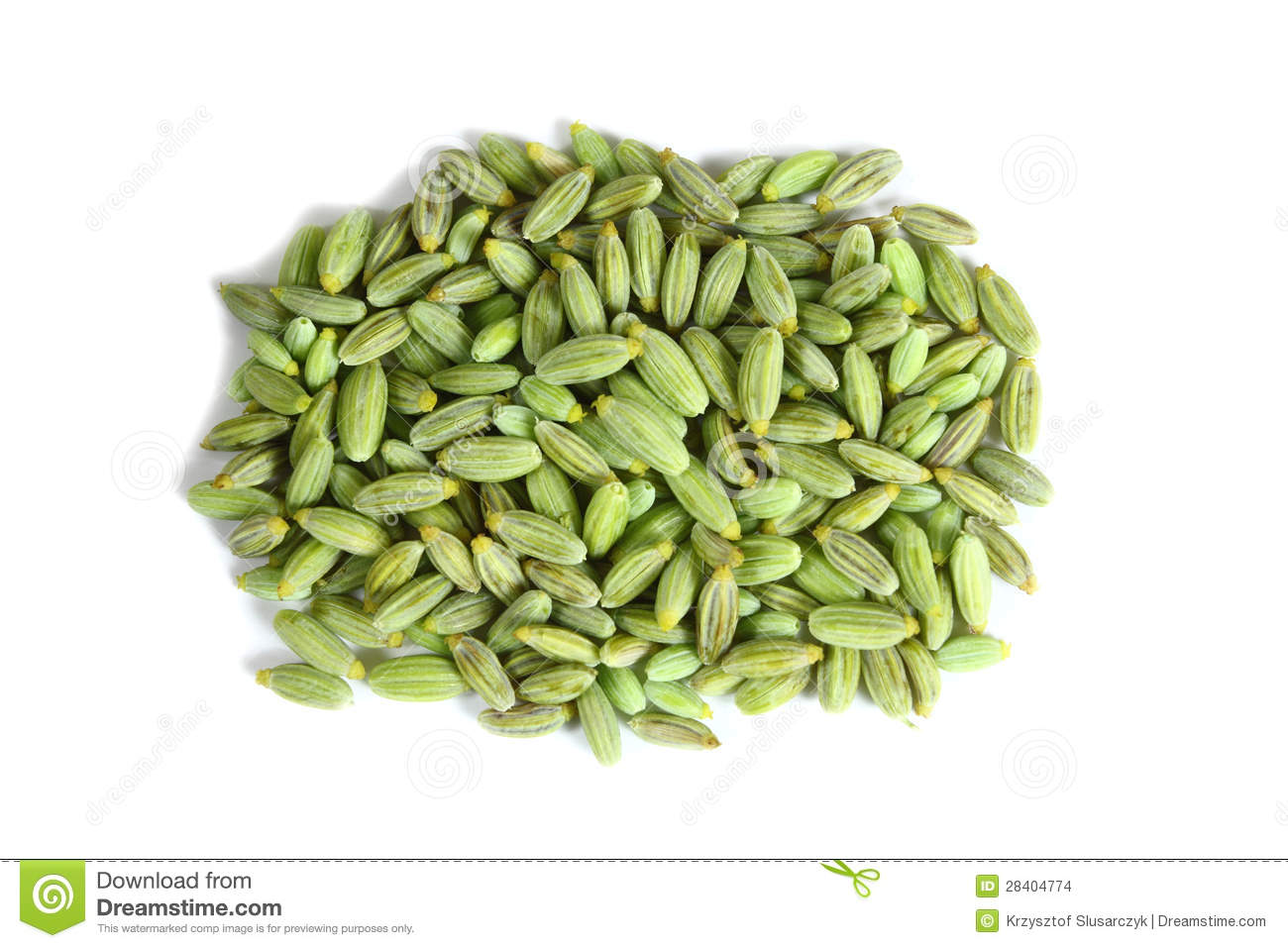 Fennel Seeds Stock Images.