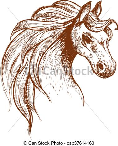 Clip Art Vector of Wild feral horse in aggressive posture sketch.