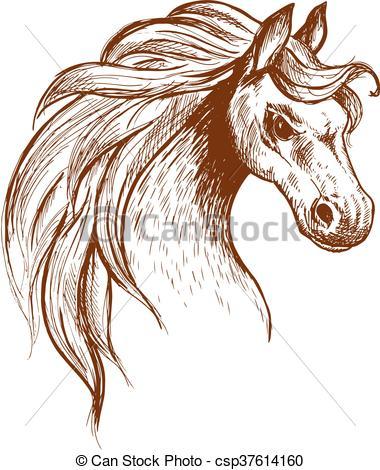Clip Art Vector of Wild feral horse in aggressive posture sketch.