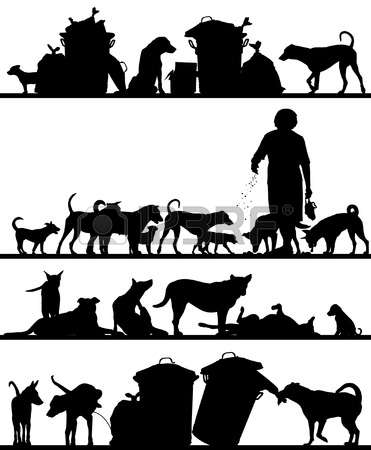 179 Feral Cliparts, Stock Vector And Royalty Free Feral Illustrations.