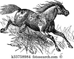 Feral Clip Art Vector Graphics. 84 feral EPS clipart vector and.
