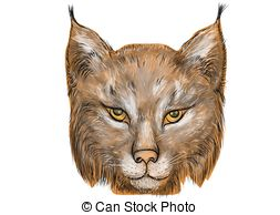 Feral cat Clipart Vector and Illustration. 8 Feral cat clip art.