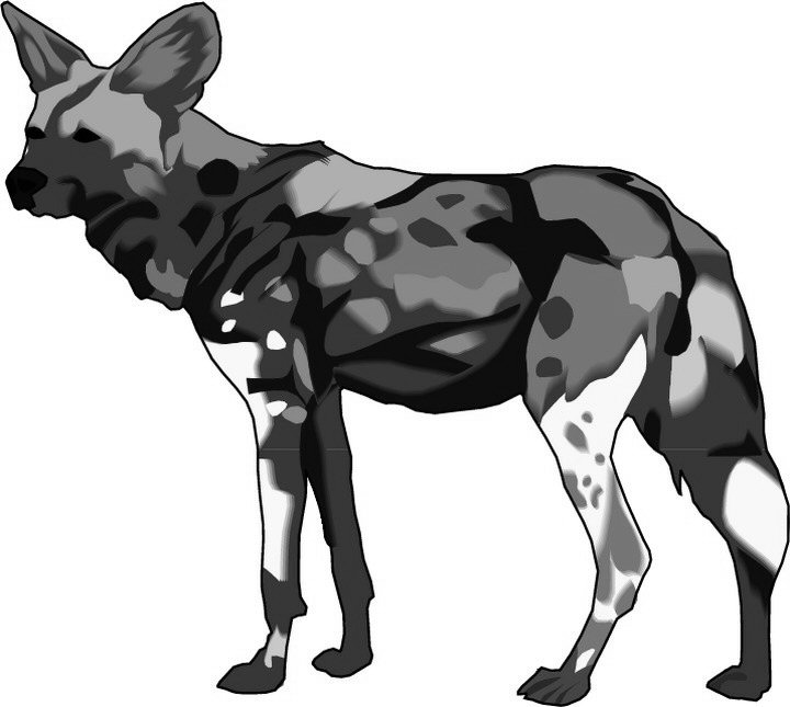 african wild dog coloring pages - photo#17