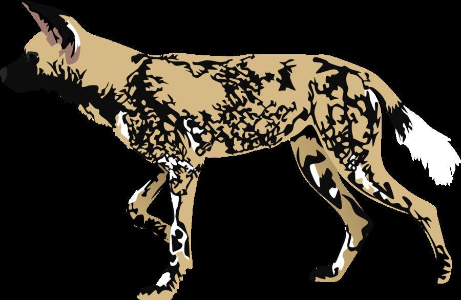 African wild dog clipart.