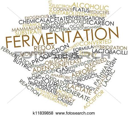Ferment Illustrations and Clipart. 132 ferment royalty free.