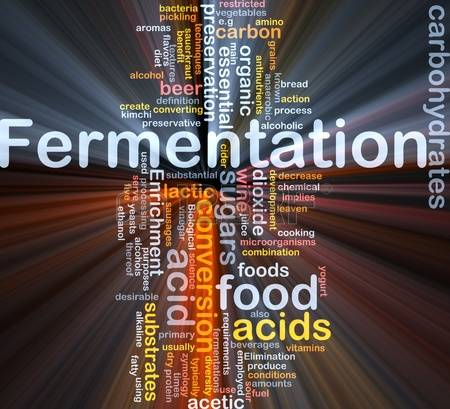 1,816 Fermentation Stock Vector Illustration And Royalty Free.