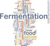 Fermentation Illustrations and Clipart. 292 fermentation royalty.