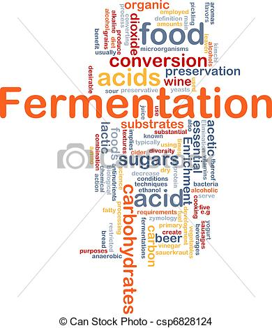 Fermentation Illustrations and Clip Art. 1,184 Fermentation.