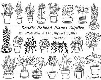 potted fern drawing clipart.