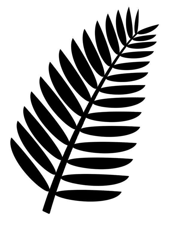Palm frond clip art free. Transparent background. This is a more.