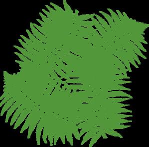 Four Fern Leaves Clip Art at Clker.com.