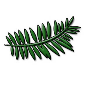 Clipart Picture of a Fern Leaf.