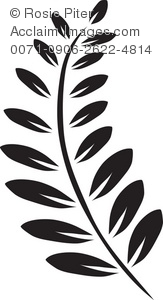 Clip Art Illustration Of A Black Fern Frond.