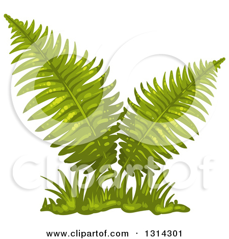 Clipart Illustration of a Silhouetted Fern Plant Over A White.