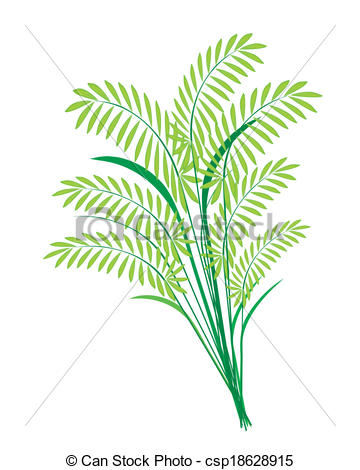 Vector Clip Art of Cereal Plants or Ferns Leaves on White.