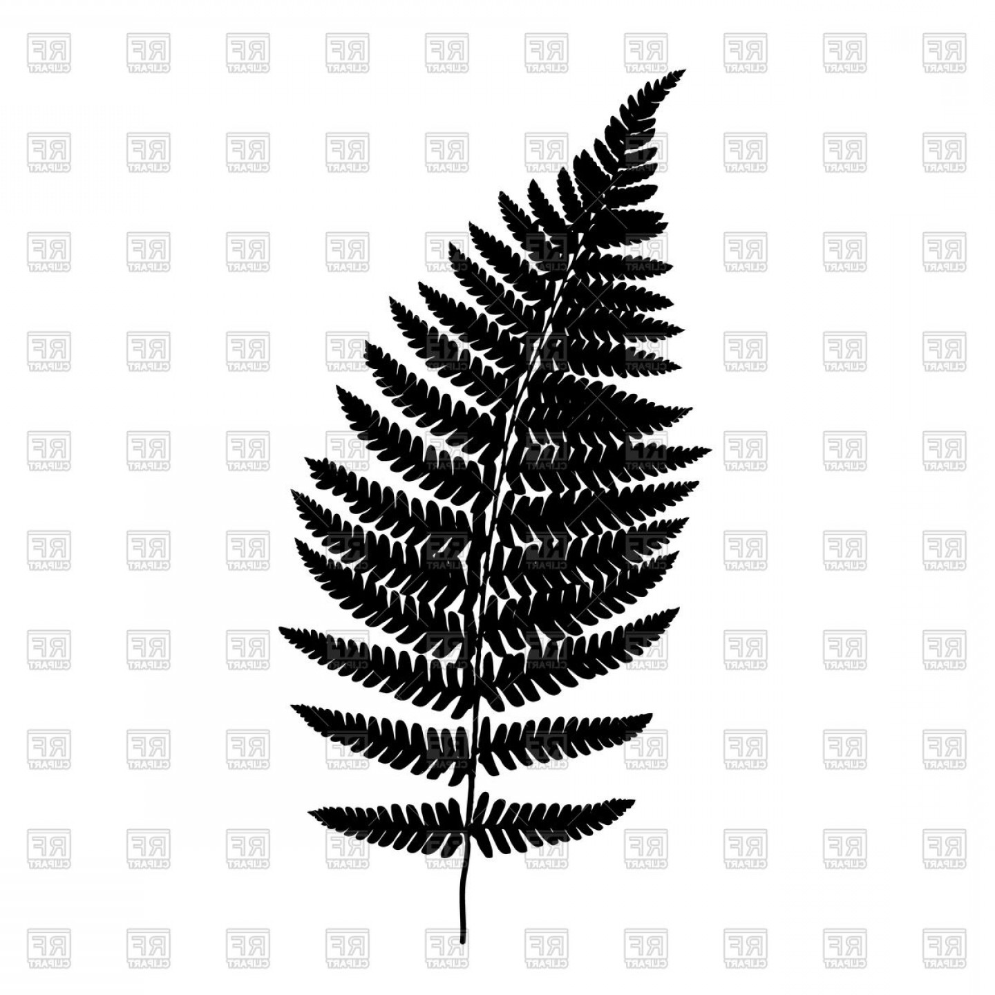 Fern Frond Black Silhouette Vector Clipart.