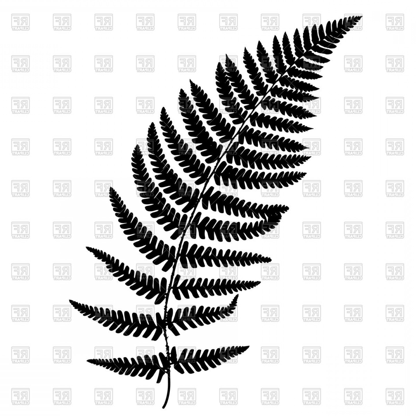 Fern Frond Silhouette Vector Clipart.