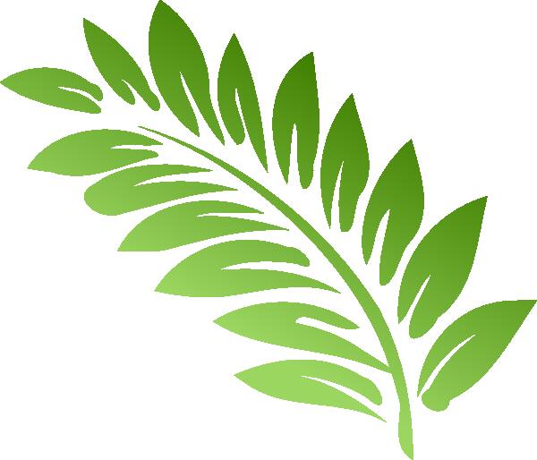 Showing post & media for Cartoon fern leaf.
