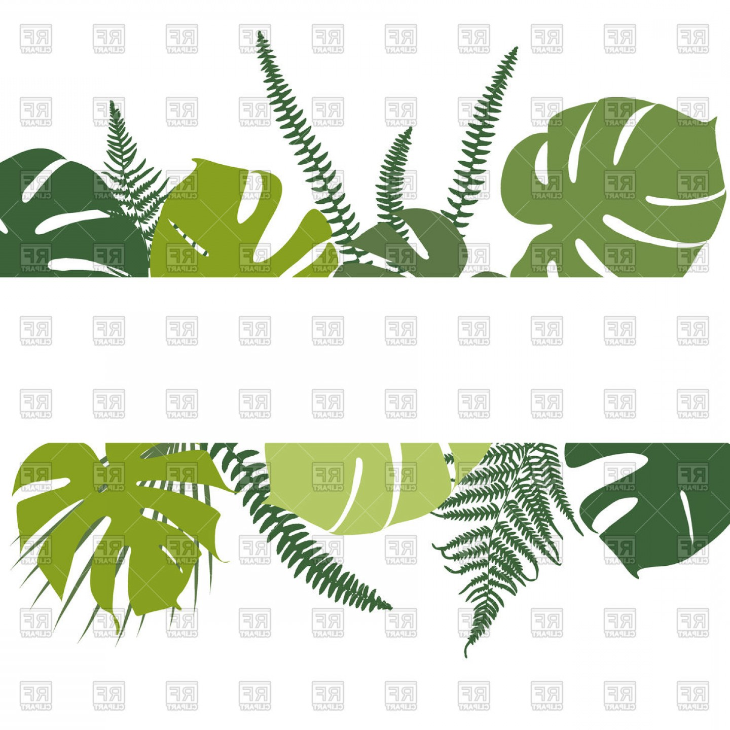 Tropical Background With Fern And Monstera Leaves Vector.