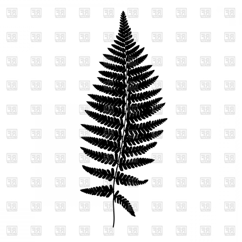 Fern Leaf Black Silhouette Vector Clipart.