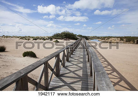 Picture of Wooden Walkway In The Dunes At San Fernando; Andalucia.