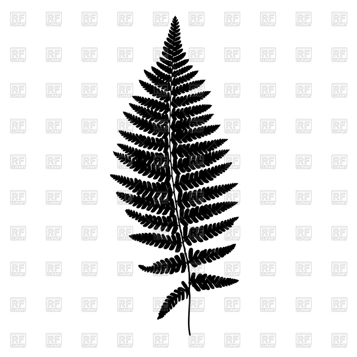 Fern leaf black silhouette Vector Image #96977.