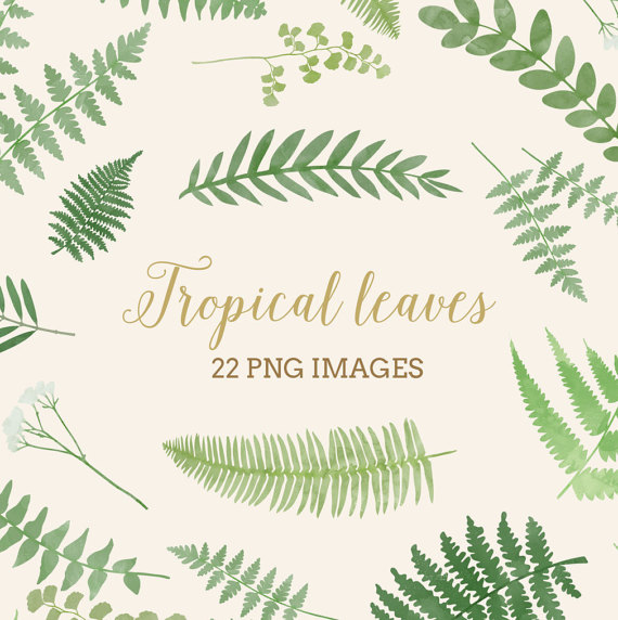 Tropical leaves clip art Digital Download fern by plainwalls.
