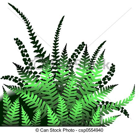 Ferns Illustrations and Clip Art. 3,230 Ferns royalty free.