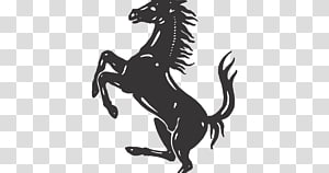 Prancing Horse transparent background PNG cliparts free.