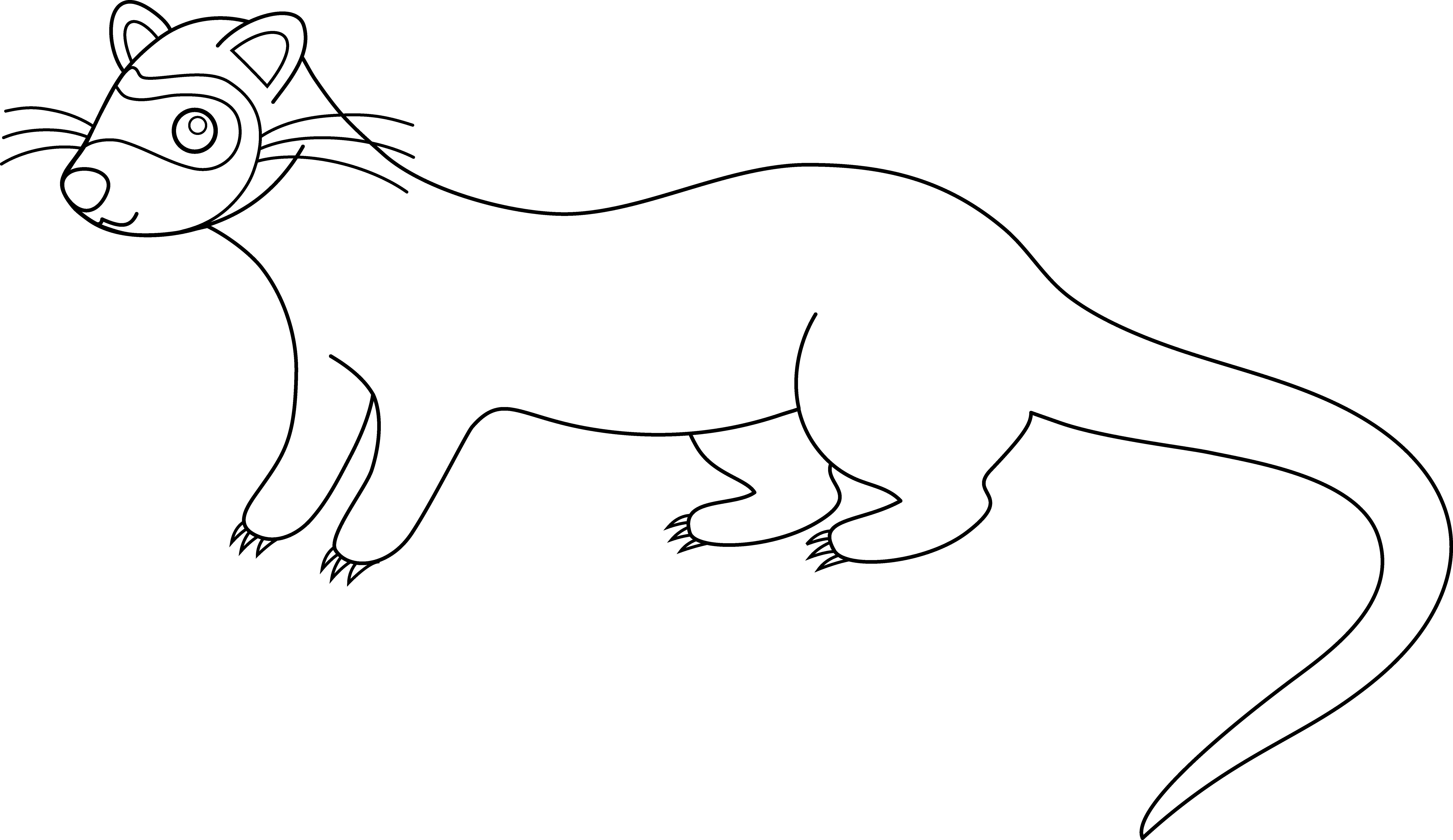 Cute Ferret Line Art.