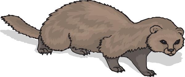 Ferret With Shadow Clip art.