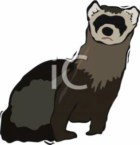 Clipart Illustration of a Ferret.