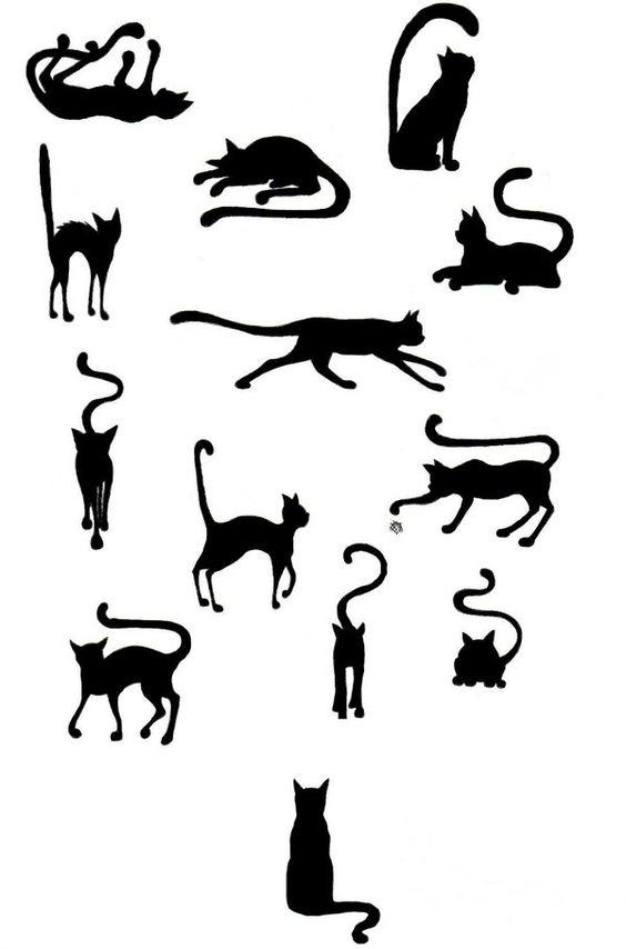 Sunglasses, Eyewear and Cats on Pinterest.