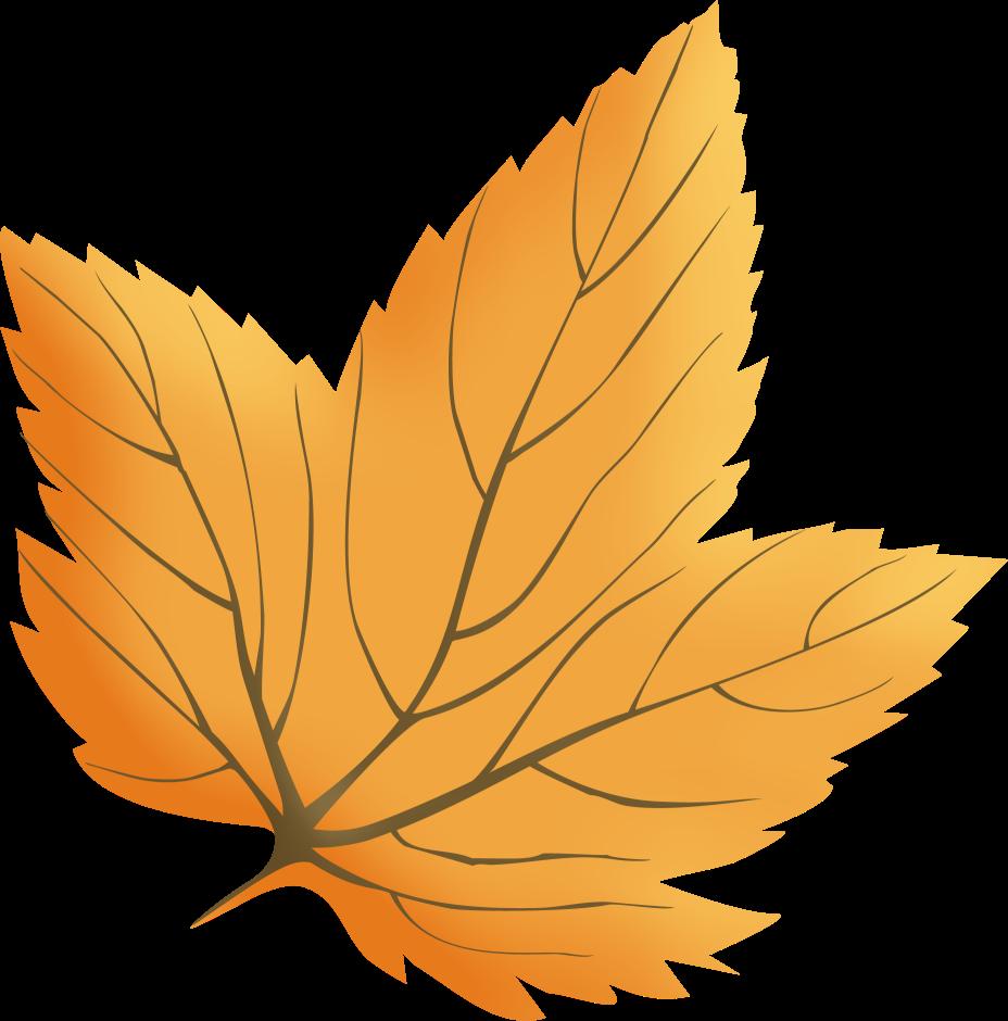 Clipart feuille d'automne.