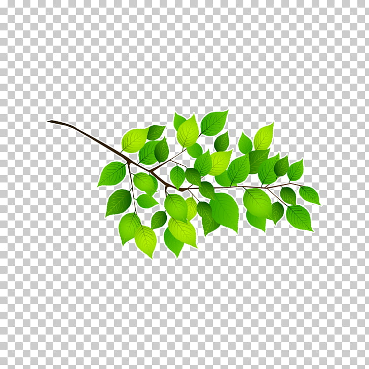 Twig Branch Leaf Adhesive Sticker, Feuille De Route PNG.