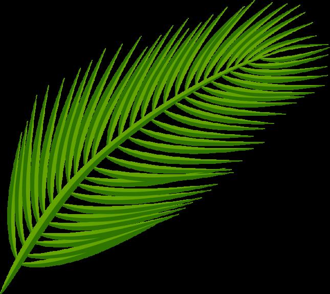 Tube feuille de palmier.