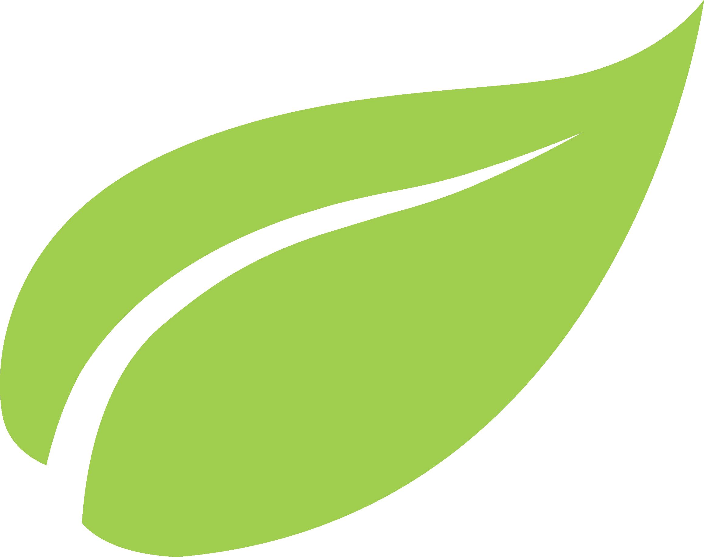 Feuille vert png 3 » PNG Image.