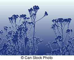 Feverfew Stock Illustrations. 26 Feverfew clip art images and.