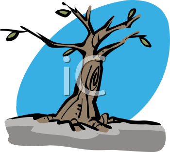 Free clipart of tree with few leaves.